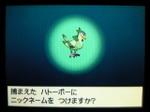 Irohatobomesu02
