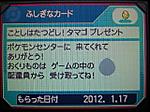 Tatudosiirotamago2