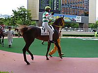 Mignonnette45