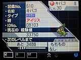 Airisukibago02