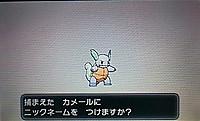 Iro00802