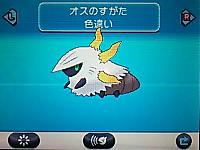 Iro63604