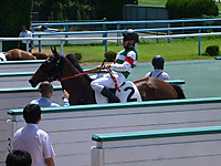 Marmoutier106